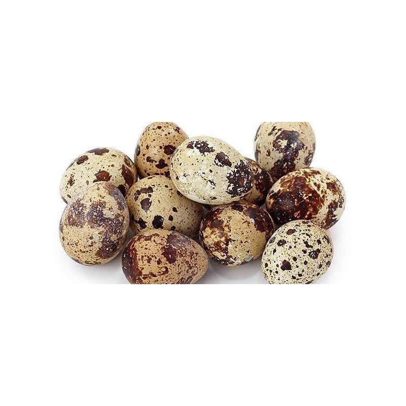 Huevos de Codornís